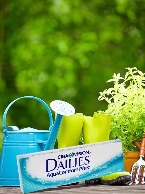 Focus Dailies Aquacomfort Plus picture
